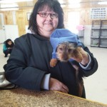 Purebred Puppies for Sale in WNY